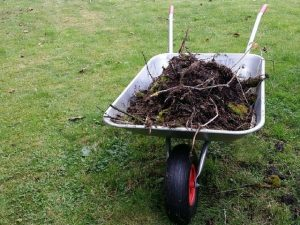 Preparing your business for Spring - Grounds Maintenance